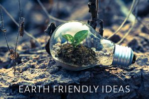 11 Ways To Be An Earth Friendly Household