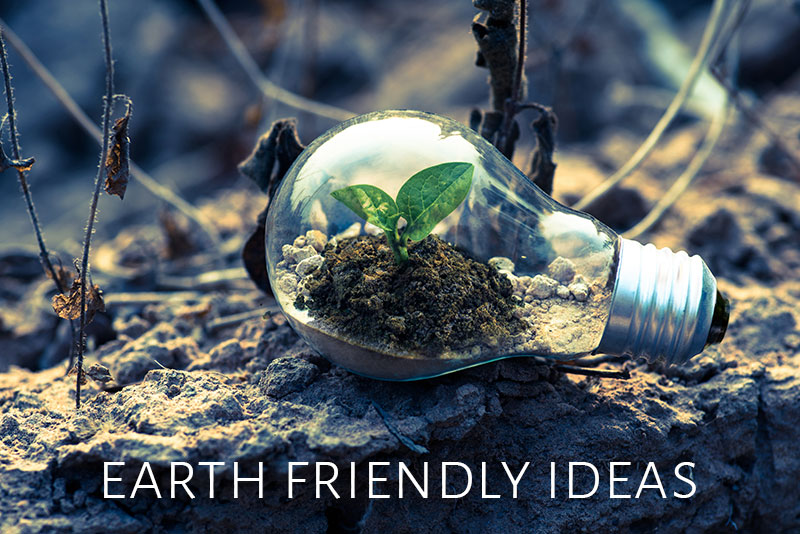 Earth Friendly Ideas
